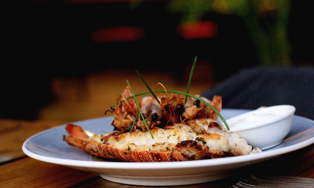 la-vinoteca-adliya-restaurant-1